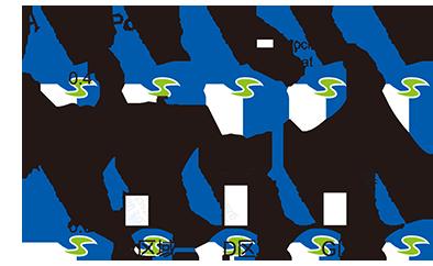 染色质免疫沉淀技术 chip